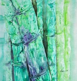 Amita Bamboos Series 5 24x24 Inches