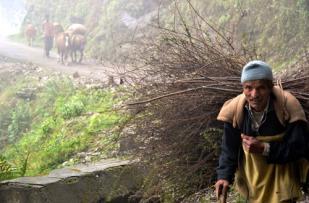 Ravindra Kumar Tanwar Load.....Our Survival