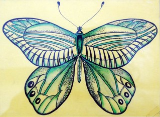 Shalini Goyal Butterfly-2 Water Colour on Handmade Paper Rs 700