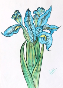 Shalini Goyal Floral-10 Water Colour on Hand Made Paper 14x12 Inch Rs 1250
