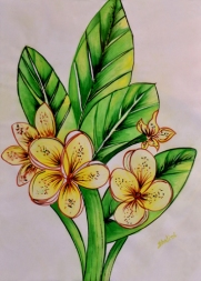 Shalini Goyal Floral-2 Water Colour on Handpaper 14x12 Inch Rs 1250