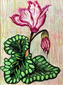 Shalini Goyal Floral-3 Water Colour on Handpaper 14x12 Inch Rs 1250