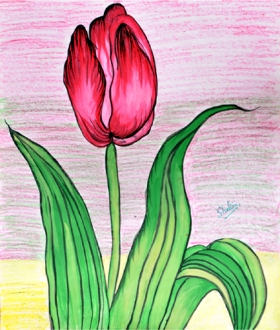 Shalini Goyal Floral-8 Water Colour on Hand Made Paper 14x12 Inch Rs 1250