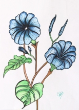 Shalini Goyal Floral-9 Water Colour on Hand Made Paper 14x12 Inch Rs 1250